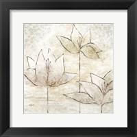 Floral Sketch II Framed Print