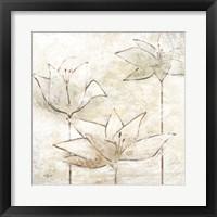 Floral Sketch I Framed Print