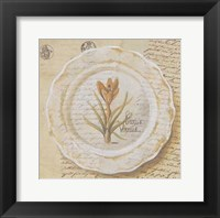 Assiette, Crocus vermus Framed Print