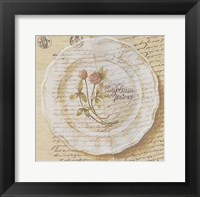 Assiette, Tripolium pratence Framed Print