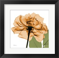 Framed Copper Rose Green Leaves