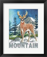 Framed High Country Mountain