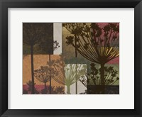 Summer Breeze II Spice Framed Print