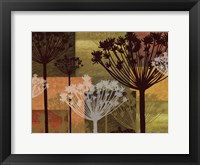 Summer Breeze II Spice 2E Framed Print