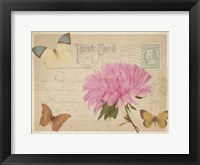Vintage Butterfly Postcard III Framed Print