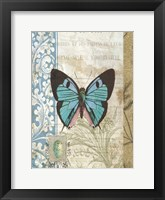 Framed Butterfly Blue