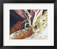 Framed Indian Corn