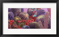 Framed Barrel Cactus 1