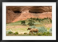 Framed Canyon De Chelly