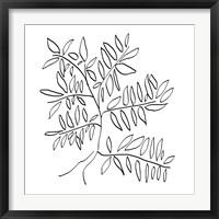Framed Black and White Tree
