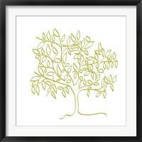 Framed Citron Tree