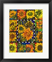 Framed Sunflower Mania