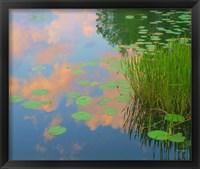 Framed In Honor of Monet