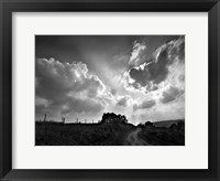 Lonely Path I Framed Print