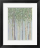 Hazy Woodlands II Framed Print