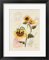 Framed Romantic Sunflower I