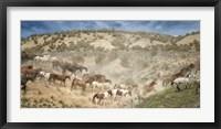 Framed Moving the Herd