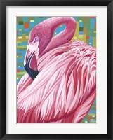 Fabulous Flamingos II Framed Print