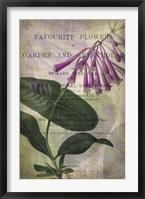 Favorite Flowers III Framed Print