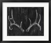 Rustic Antlers II Framed Print