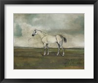 A Grey Hunter in a Landscape Framed Print