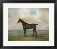 The Prince Rohan's Favorite Hunter Framed Print
