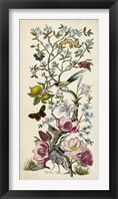 Chinoiserie Natura II Framed Print
