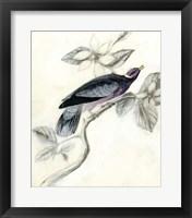 Rustic Aviary I Framed Print