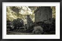 Irish Castle Views III Framed Print