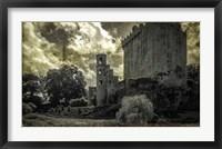 Irish Castle Views III Framed Print