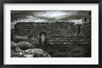 Irish Castle Views V Framed Print