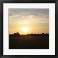 Sunset Field I Framed Print