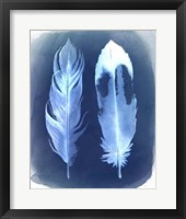 Feather Negatives II Framed Print