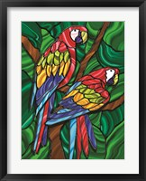 Framed Parrot B
