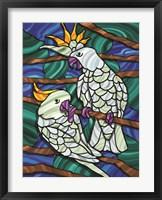 Framed Parrot C