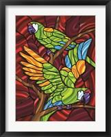 Framed Parrot D
