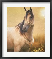 Framed Arabian Gold