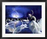 Framed Wild Swans