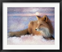 Framed Winter Fox