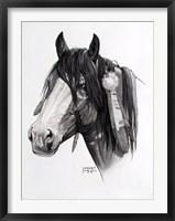 Framed Cheyenne