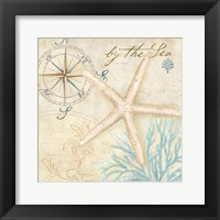 Nautical Shells I Framed Print
