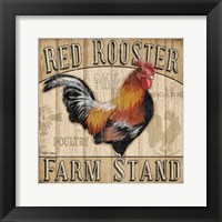 Country Rooster I Framed Print