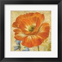 Primavera II Framed Print