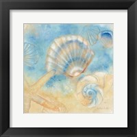 Watercolor Shells II Framed Print