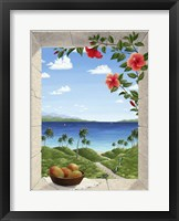 Framed Dreams of Hawaii