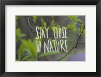 Framed Nature