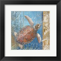 Framed Turtle and Sea