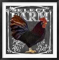Framed Rooster on Chalkboard III