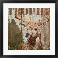 Framed Open Season Trophy