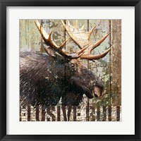 Framed Open Season Moose